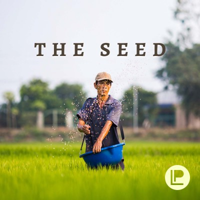 The Soil & The Seed (Part 2)